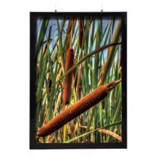 Magnetic LED Frame Dubbelsidig A4