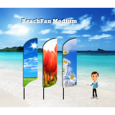 BeachFan Medium - 4-pack